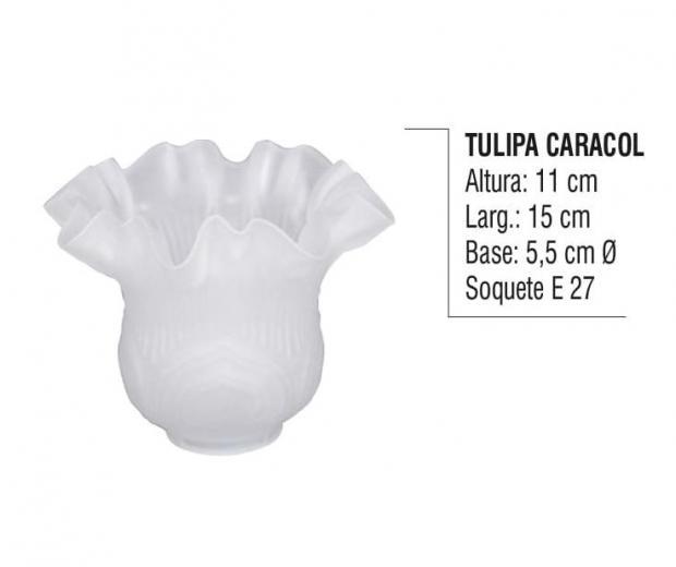 Tulipa Caracol
