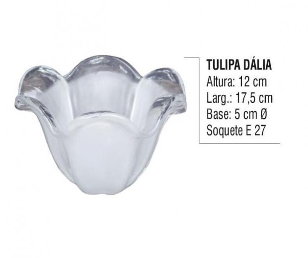 Tulipa Dália